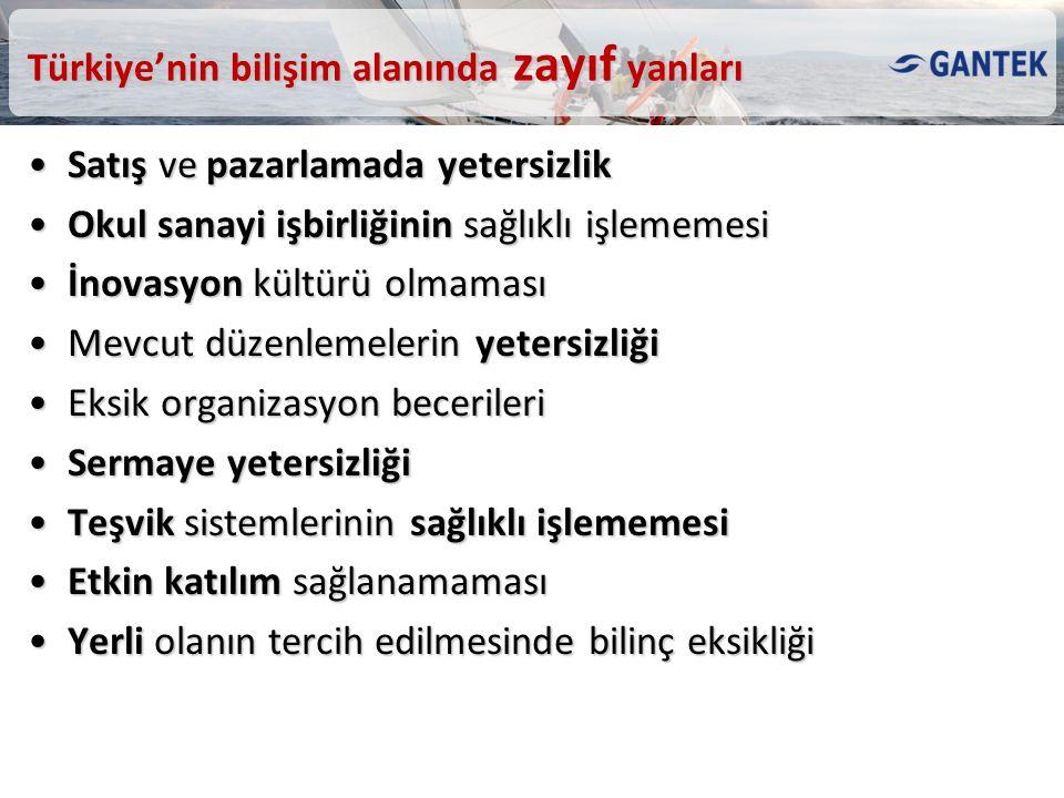 Türkiye'nin bilişim alanında zayıf yanları