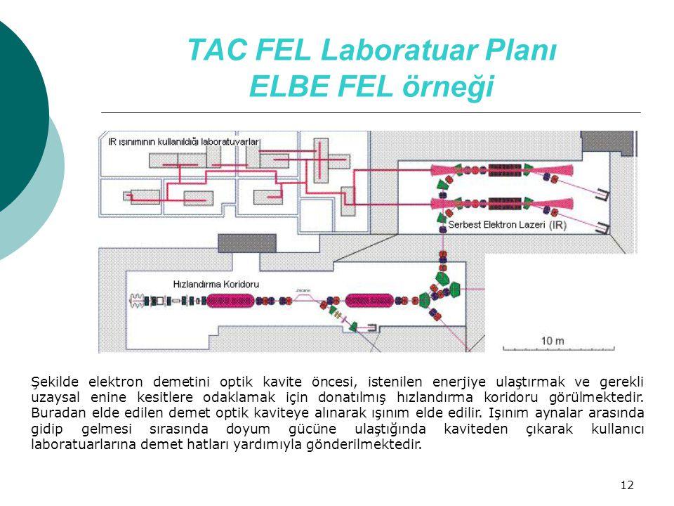 TAC FEL Laboratuar Planı ELBE FEL örneği