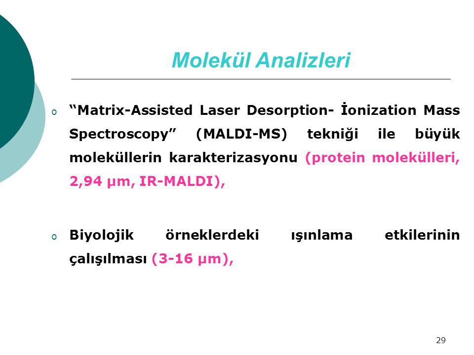 Molekül Analizleri