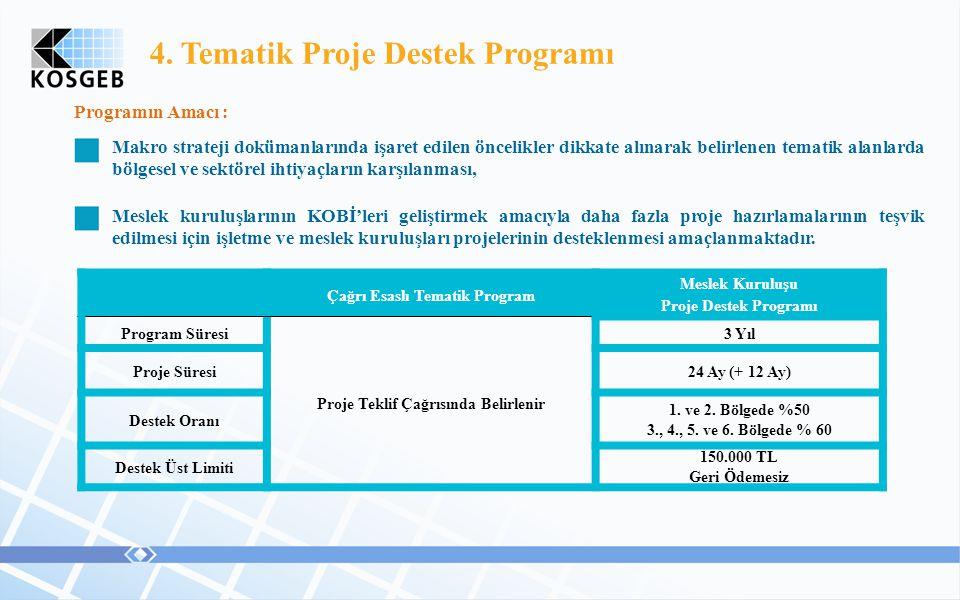 Çağrı Esaslı Tematik Program Proje Teklif Çağrısında Belirlenir