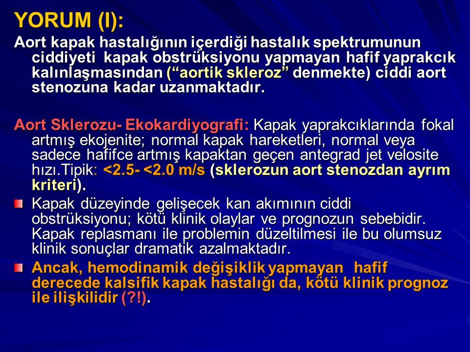 YORUM (I):
