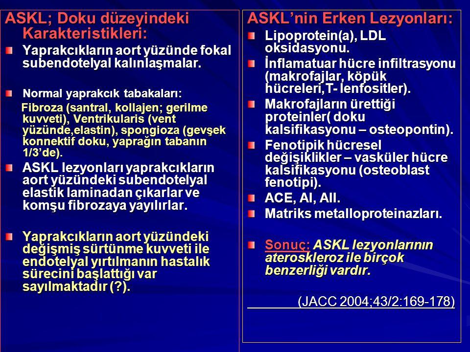 ASKL; Doku düzeyindeki Karakteristikleri: ASKL'nin Erken Lezyonları: