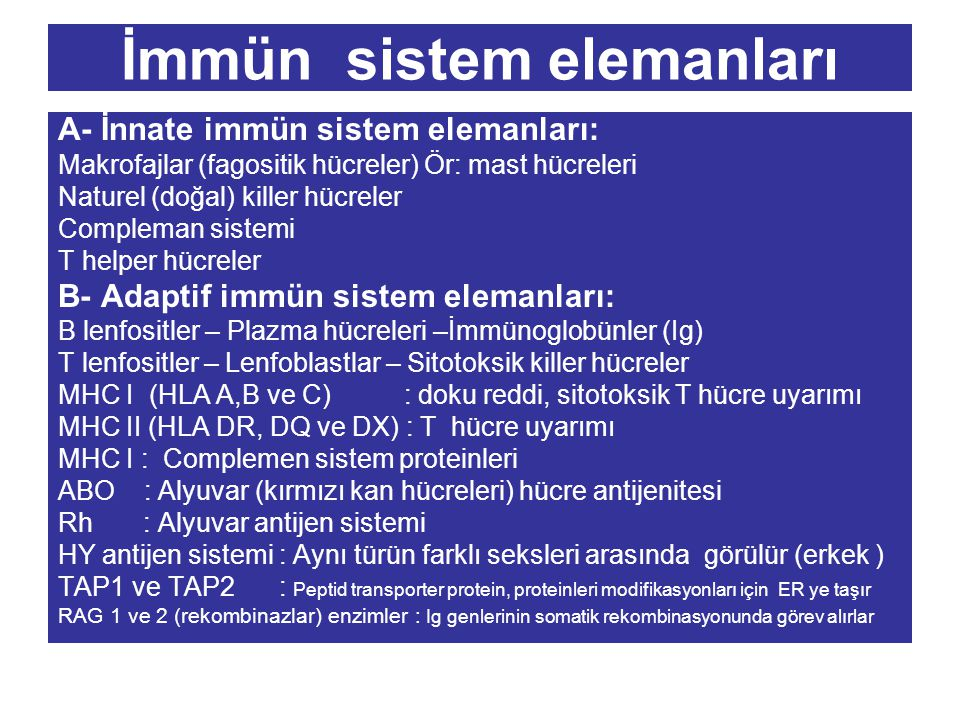 İmmün sistem elemanları
