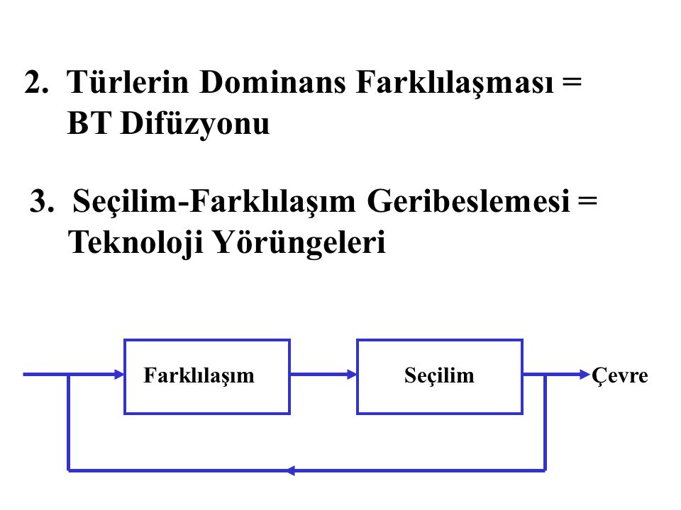 2. Türlerin Dominans Farklılaşması = BT Difüzyonu