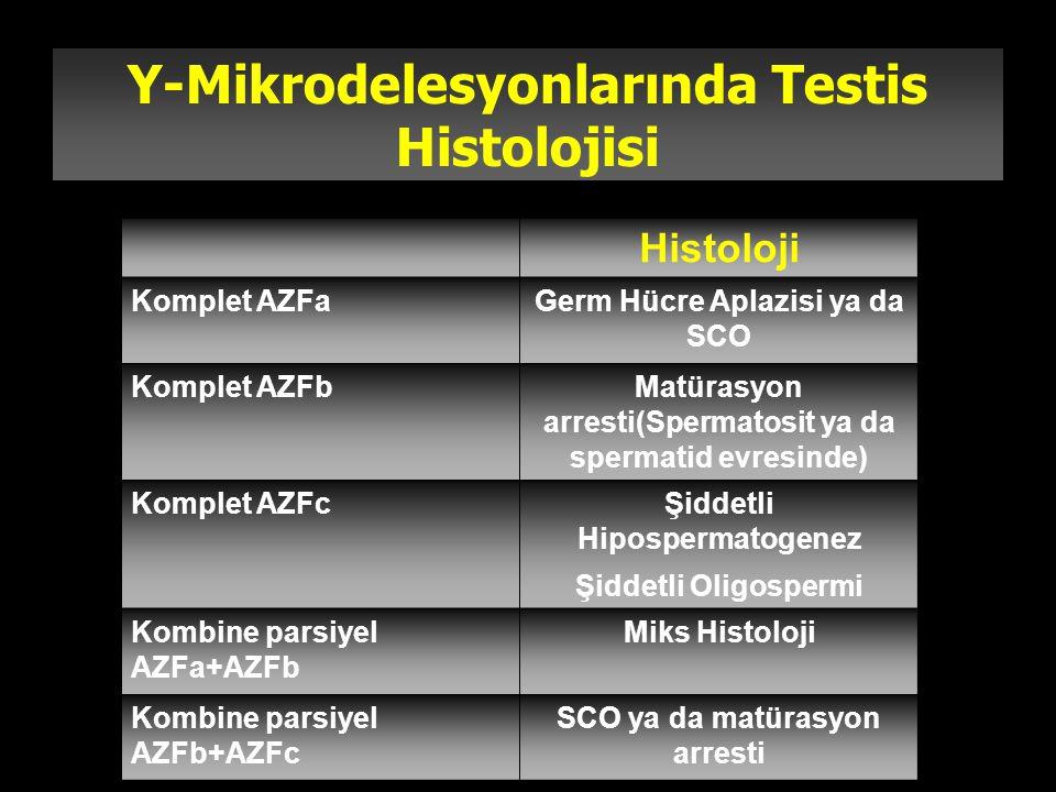 Y-Mikrodelesyonlarında Testis Histolojisi