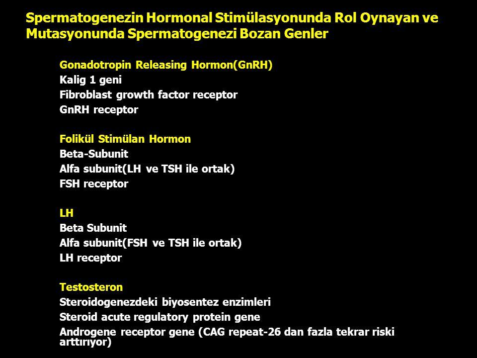 Spermatogenezin Hormonal Stimülasyonunda Rol Oynayan ve Mutasyonunda Spermatogenezi Bozan Genler