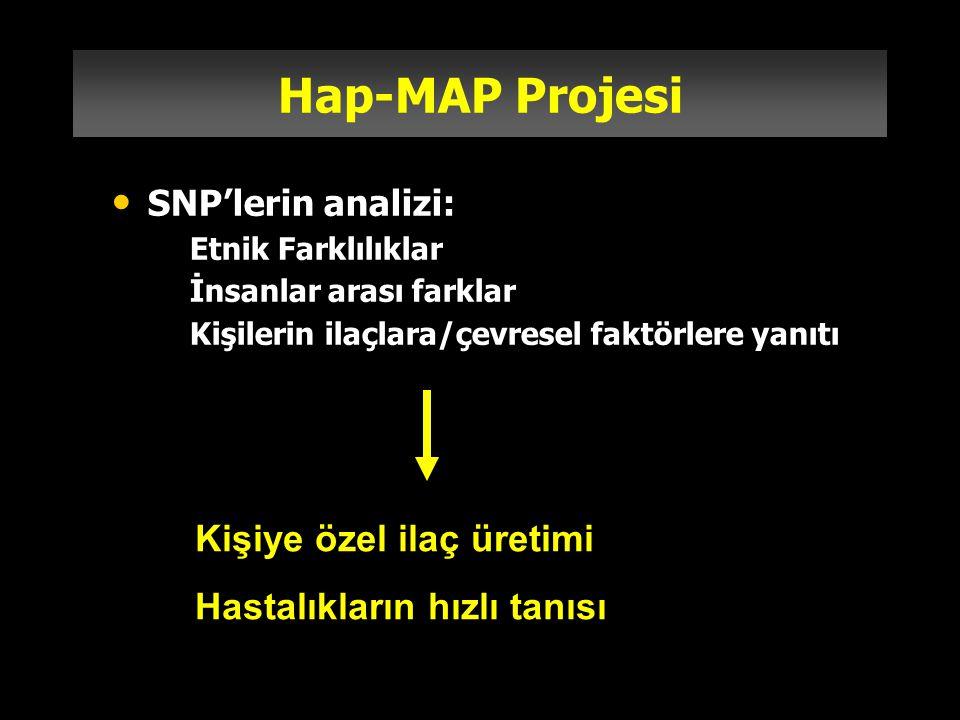 Hap-MAP Projesi Kişiye özel ilaç üretimi Hastalıkların hızlı tanısı