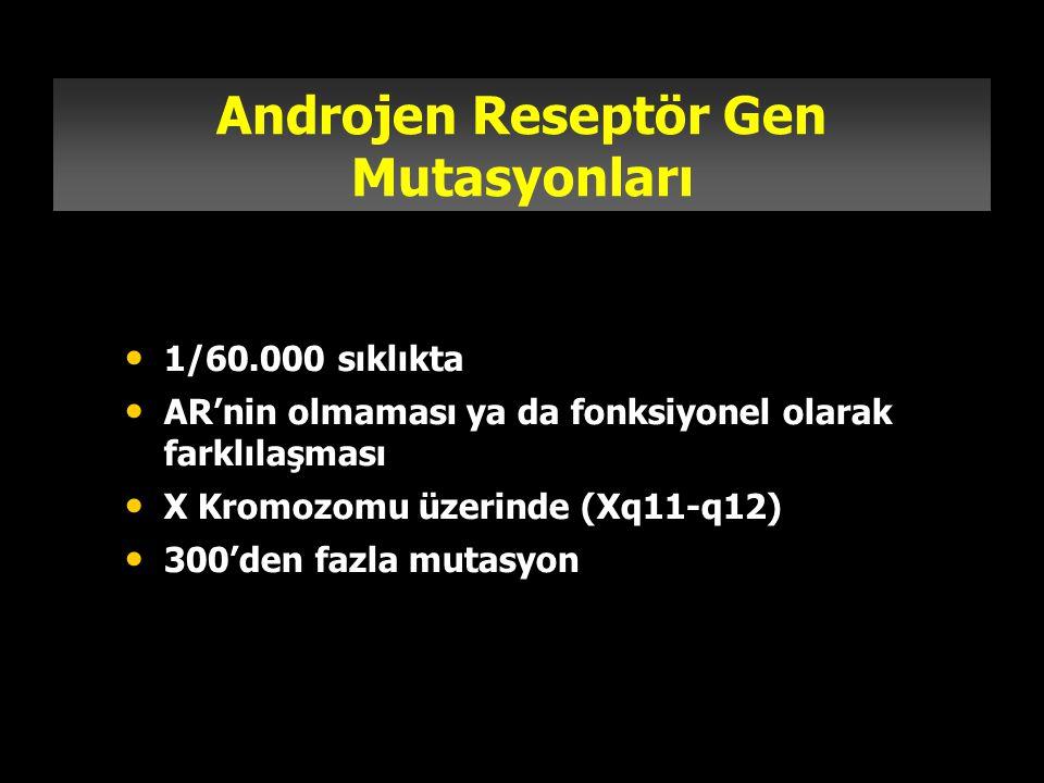 Androjen Reseptör Gen Mutasyonları