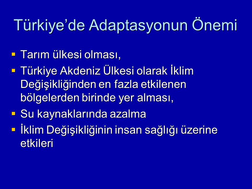 Türkiye'de Adaptasyonun Önemi
