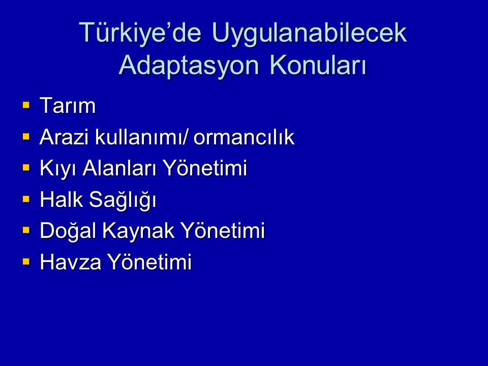 Türkiye'de Uygulanabilecek Adaptasyon Konuları