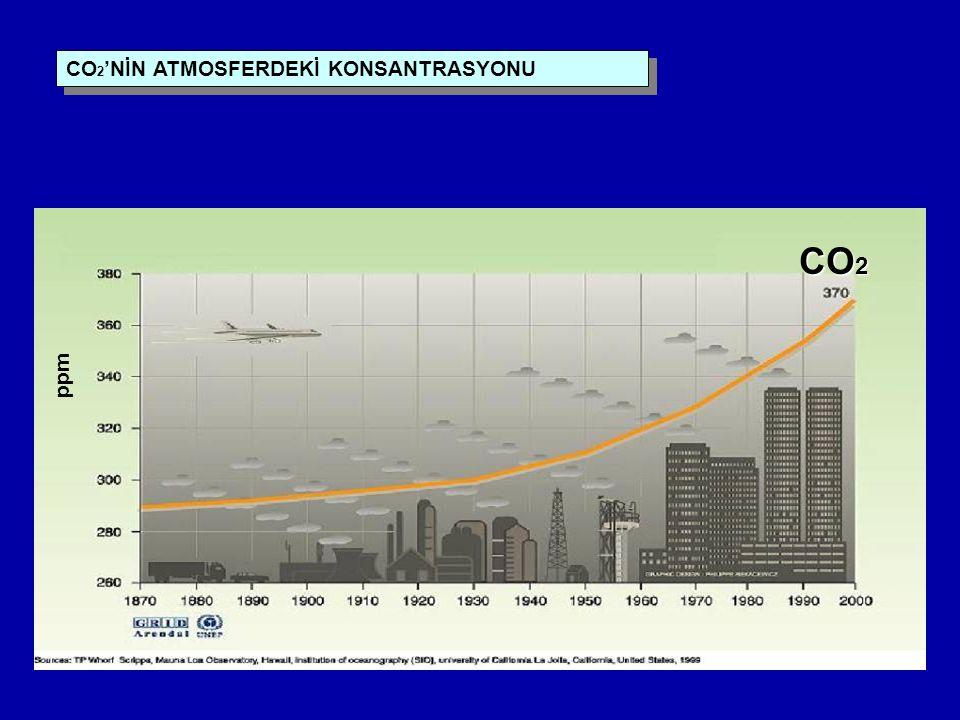 CO2'NİN ATMOSFERDEKİ KONSANTRASYONU