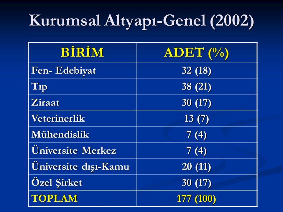 Kurumsal Altyapı-Genel (2002)