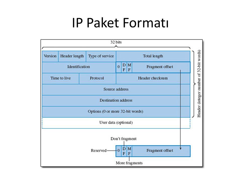 IP Paket Formatı