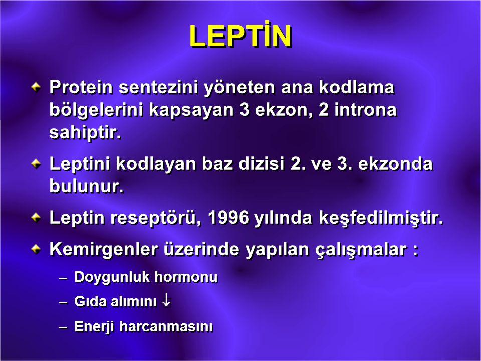 LEPTİN Protein sentezini yöneten ana kodlama bölgelerini kapsayan 3 ekzon, 2 introna sahiptir. Leptini kodlayan baz dizisi 2. ve 3. ekzonda bulunur.