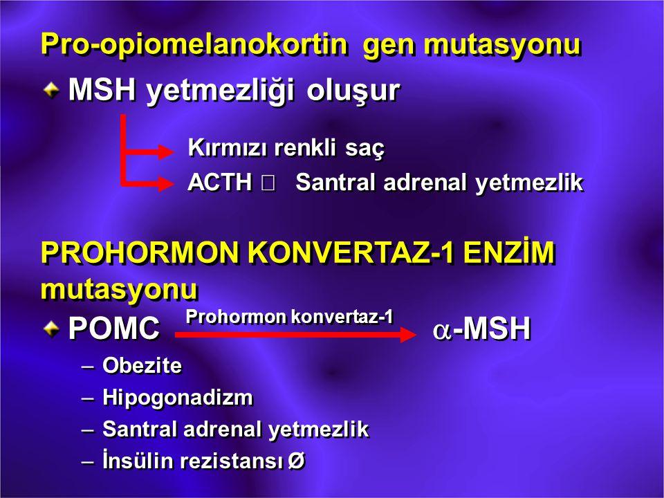 Pro-opiomelanokortin gen mutasyonu