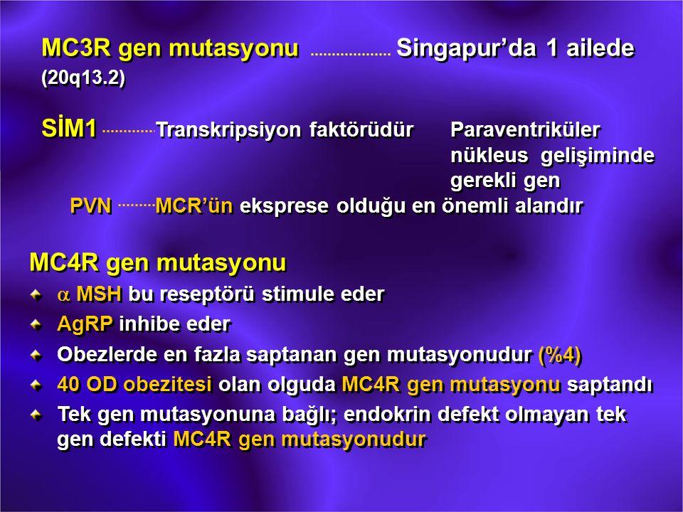 MC3R gen mutasyonu Singapur'da 1 ailede