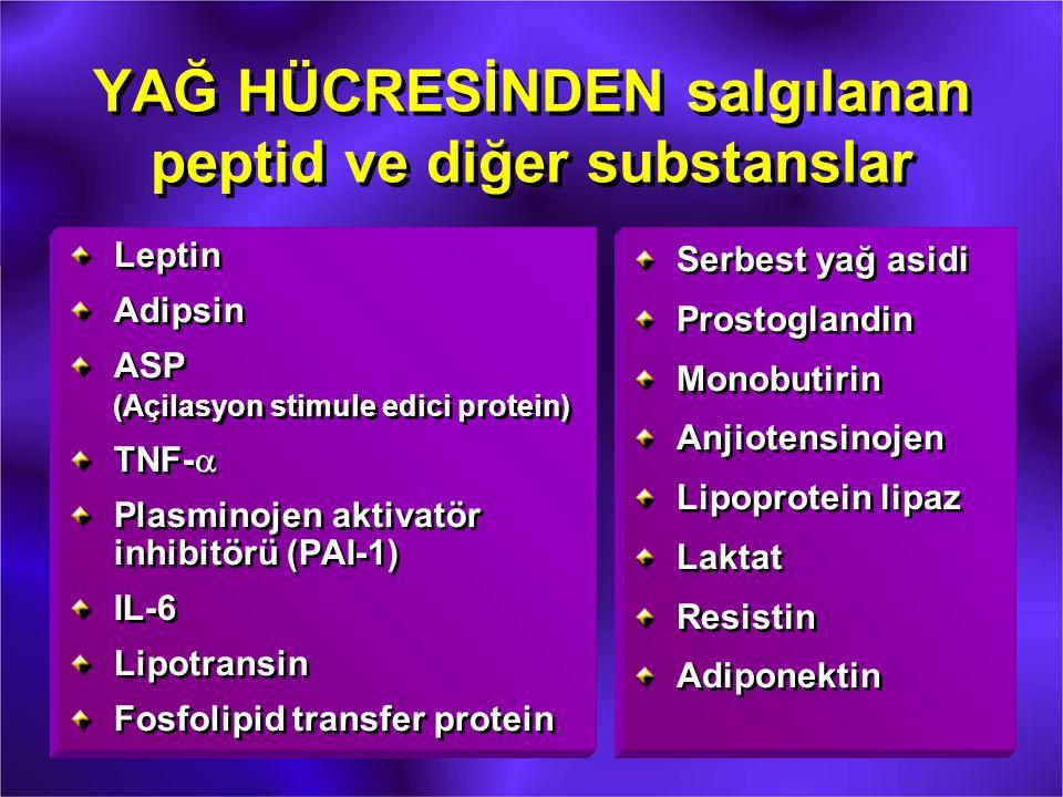 YAĞ HÜCRESİNDEN salgılanan peptid ve diğer substanslar