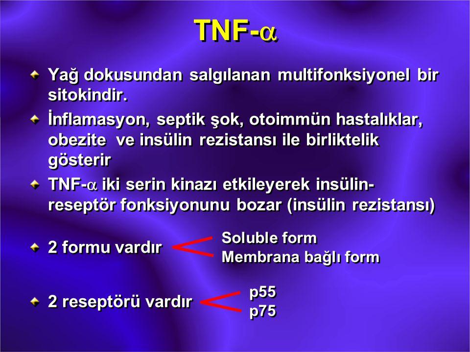 TNF-a Yağ dokusundan salgılanan multifonksiyonel bir sitokindir.