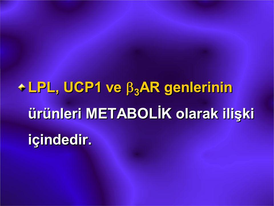 LPL, UCP1 ve b3AR genlerinin ürünleri METABOLİK olarak ilişki içindedir.