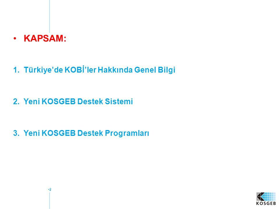 KAPSAM: Türkiye'de KOBİ'ler Hakkında Genel Bilgi