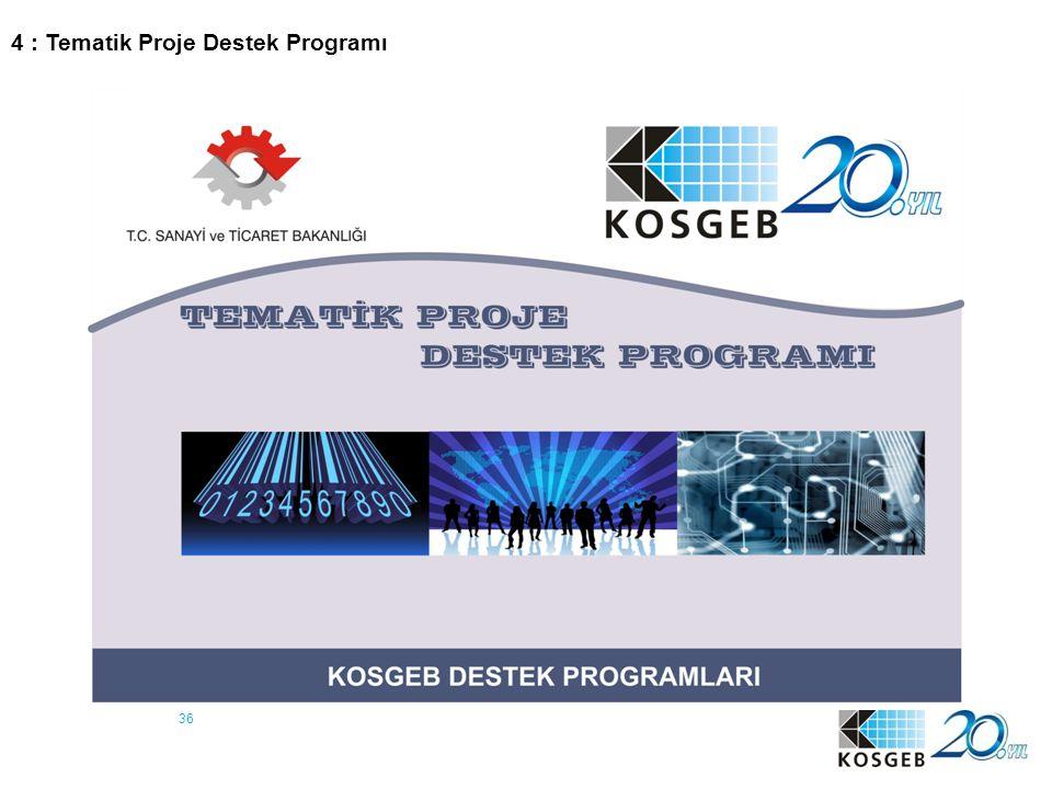 4 : Tematik Proje Destek Programı