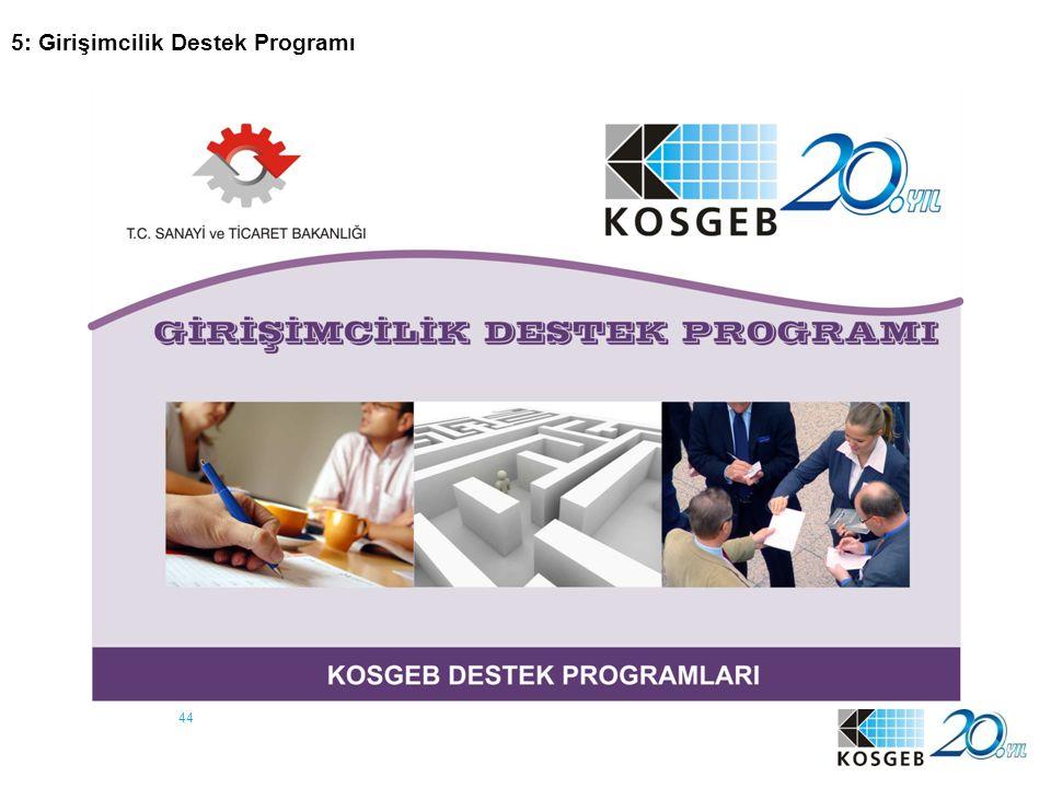 5: Girişimcilik Destek Programı