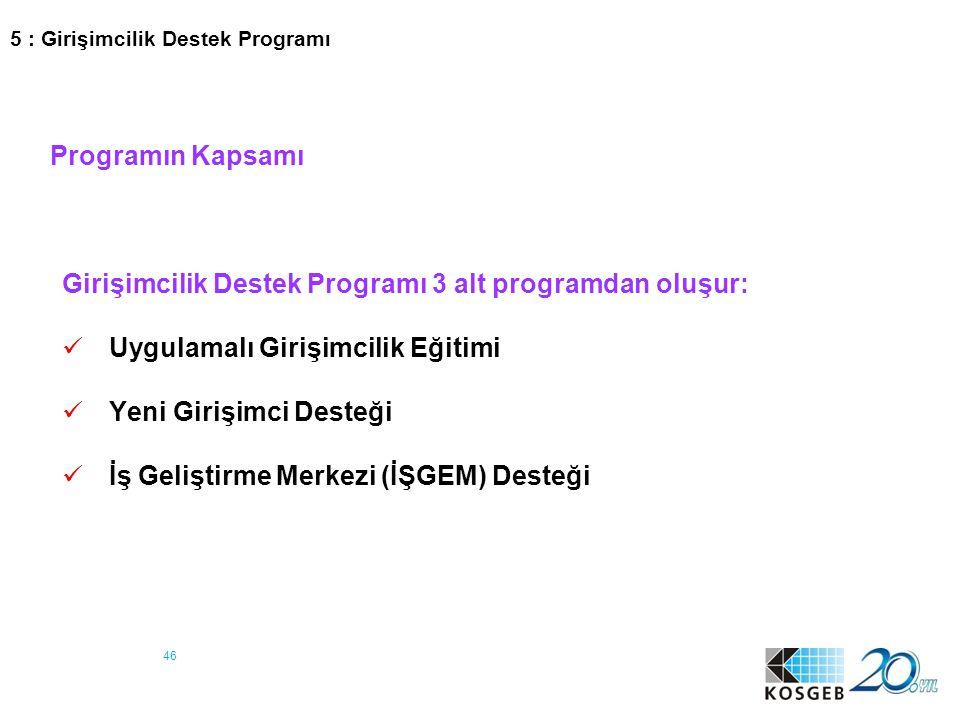 Girişimcilik Destek Programı 3 alt programdan oluşur: