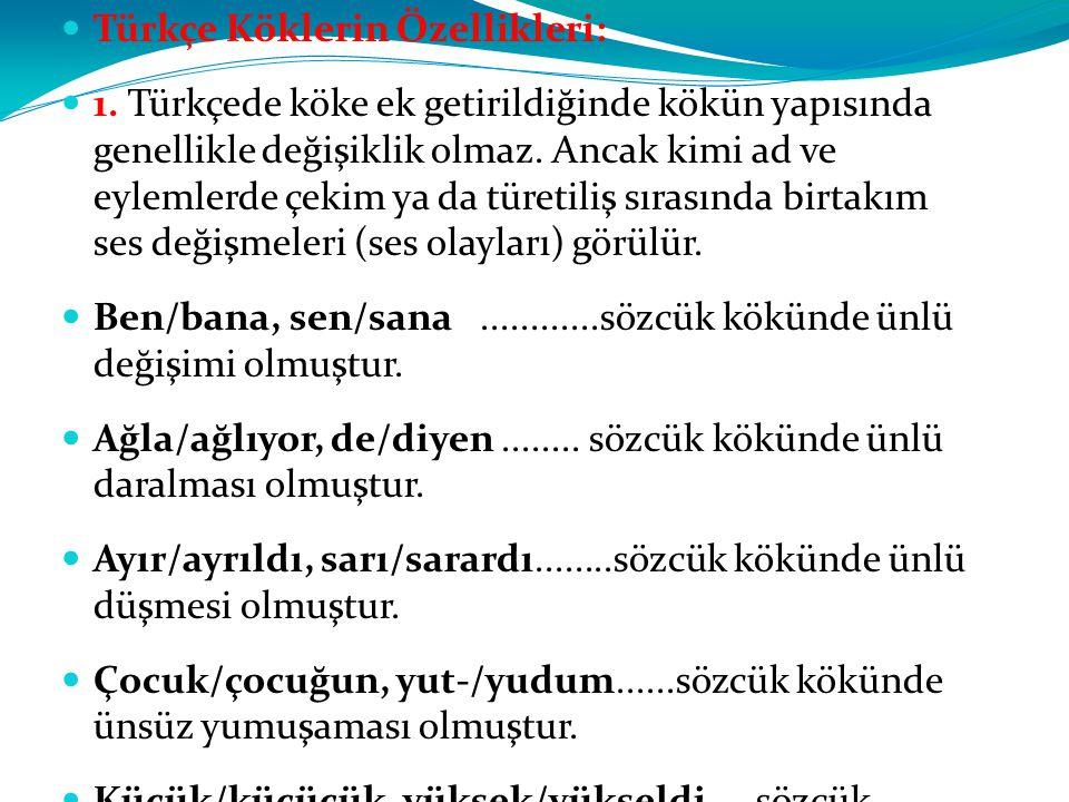 Türkçe Köklerin Özellikleri: