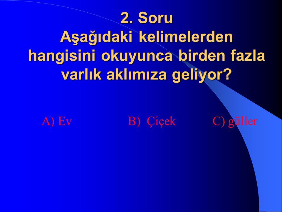 2. Soru Aşağıdaki kelimelerden hangisini okuyunca birden fazla varlık aklımıza geliyor