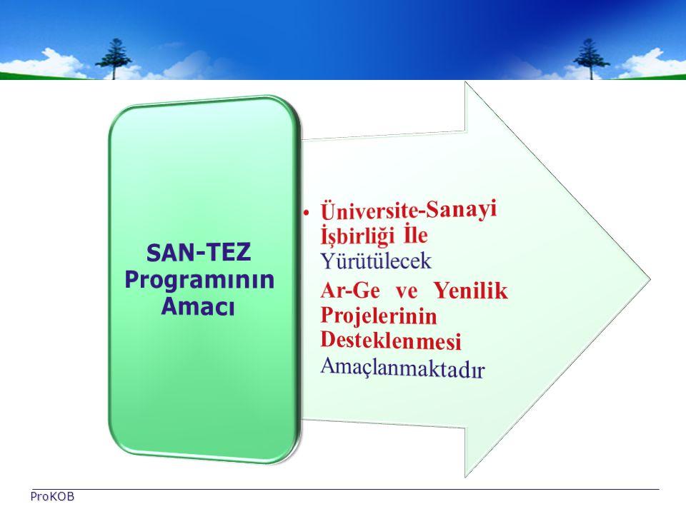 SAN-TEZ Programının Amacı
