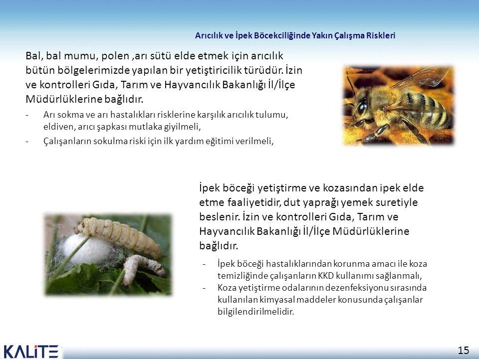 Arıcılık ve İpek Böcekciliğinde Yakın Çalışma Riskleri