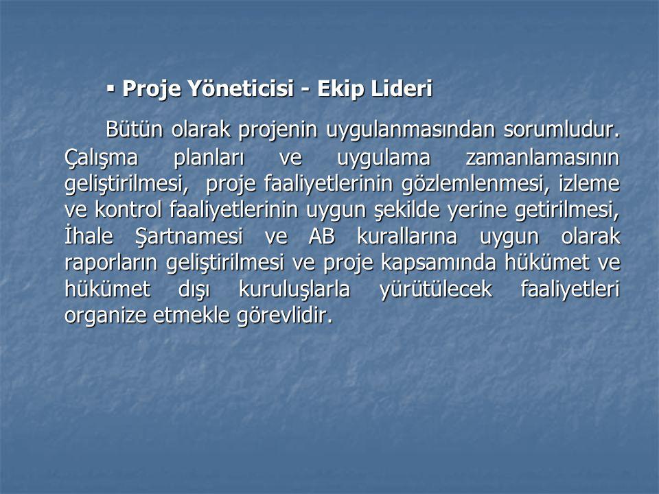 Proje Yöneticisi - Ekip Lideri