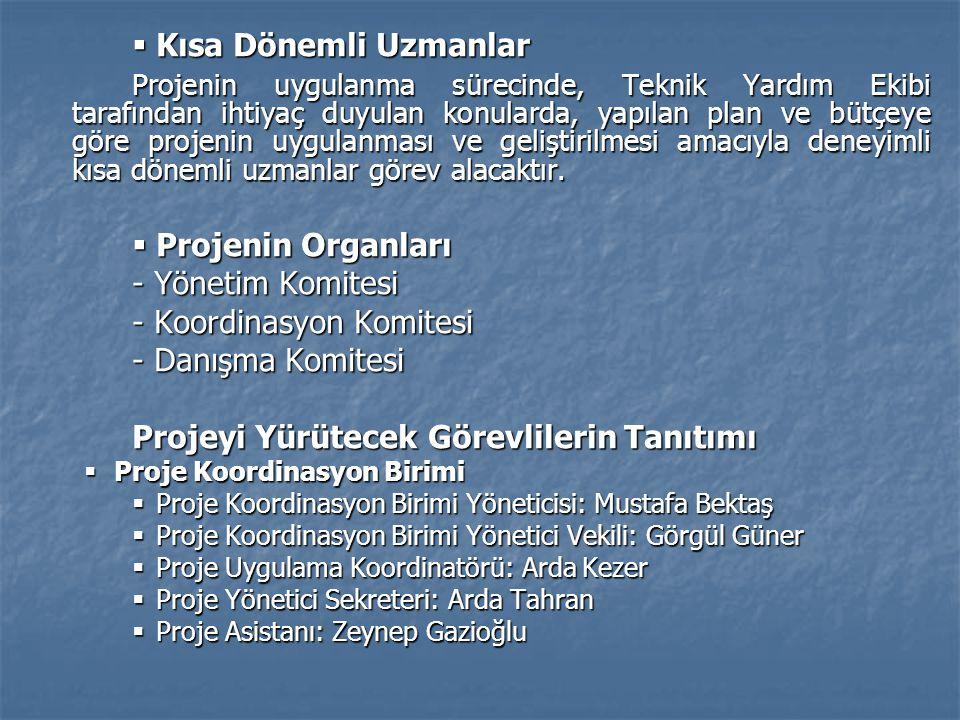 - Koordinasyon Komitesi - Danışma Komitesi
