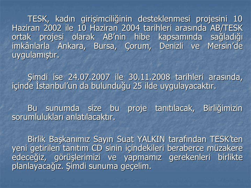 TESK, kadın girişimciliğinin desteklenmesi projesini 10 Haziran 2002 ile 10 Haziran 2004 tarihleri arasında AB/TESK ortak projesi olarak AB'nin hibe kapsamında sağladığı imkânlarla Ankara, Bursa, Çorum, Denizli ve Mersin'de uygulamıştır.