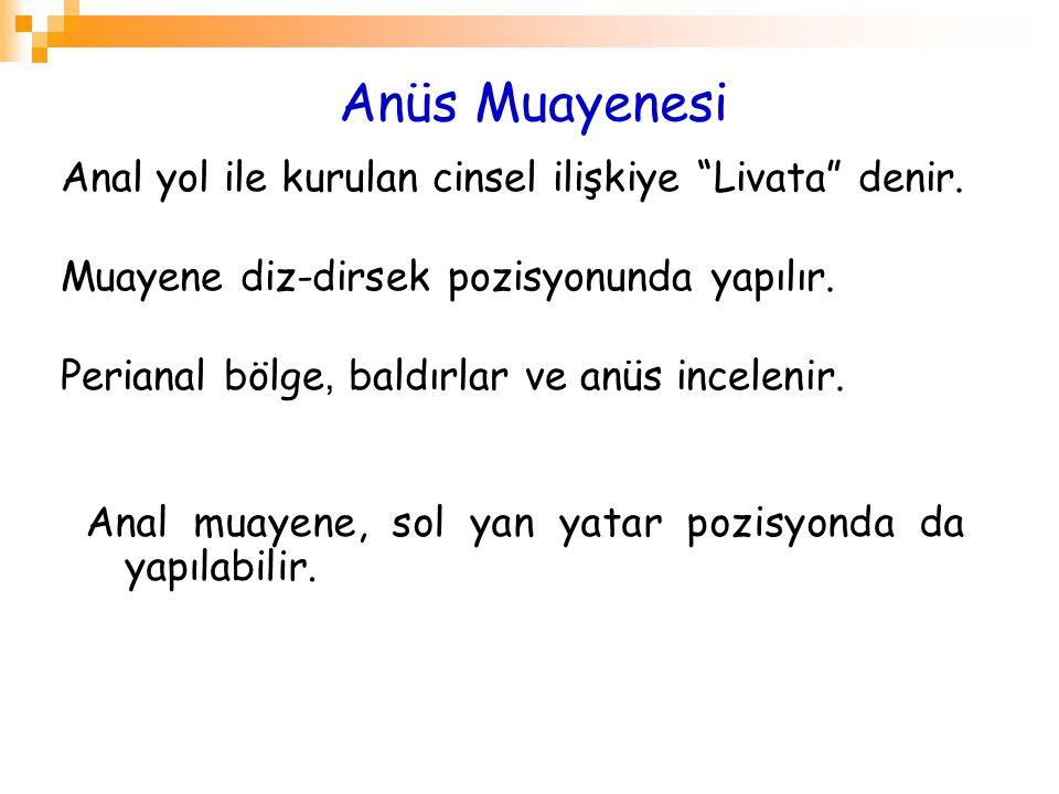 Anüs Muayenesi Anal yol ile kurulan cinsel ilişkiye Livata denir.