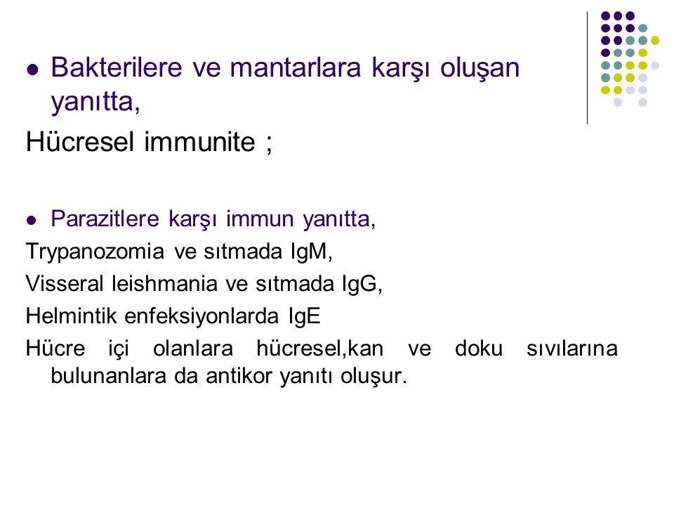 Bakterilere ve mantarlara karşı oluşan yanıtta, Hücresel immunite ;