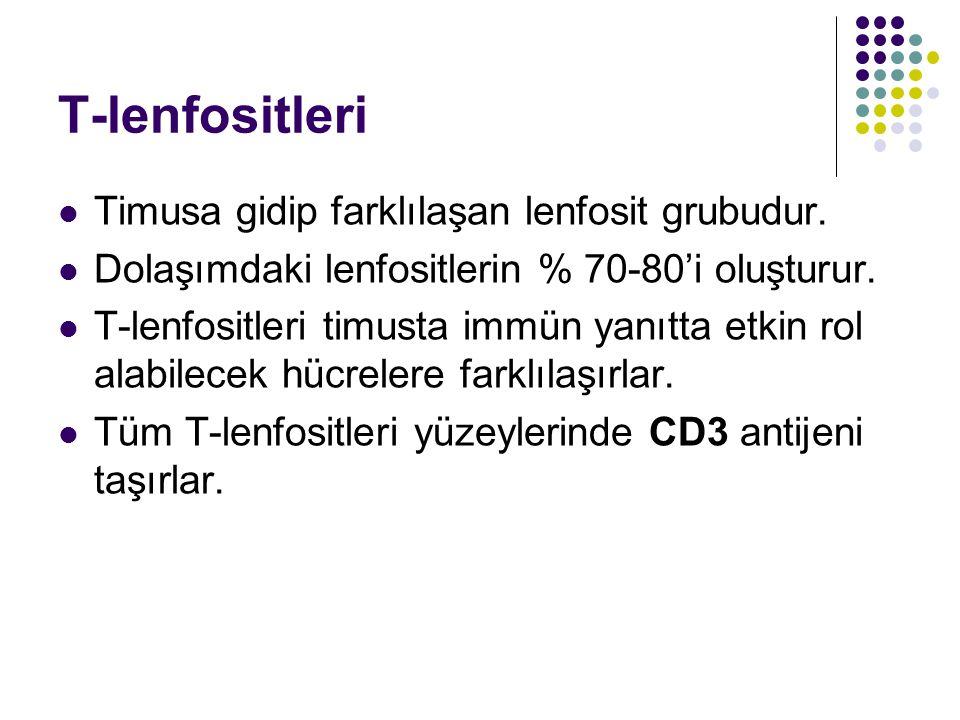 T-lenfositleri Timusa gidip farklılaşan lenfosit grubudur.