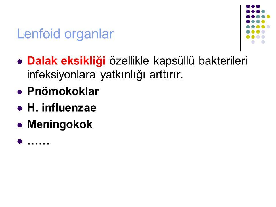Lenfoid organlar Dalak eksikliği özellikle kapsüllü bakterileri infeksiyonlara yatkınlığı arttırır.