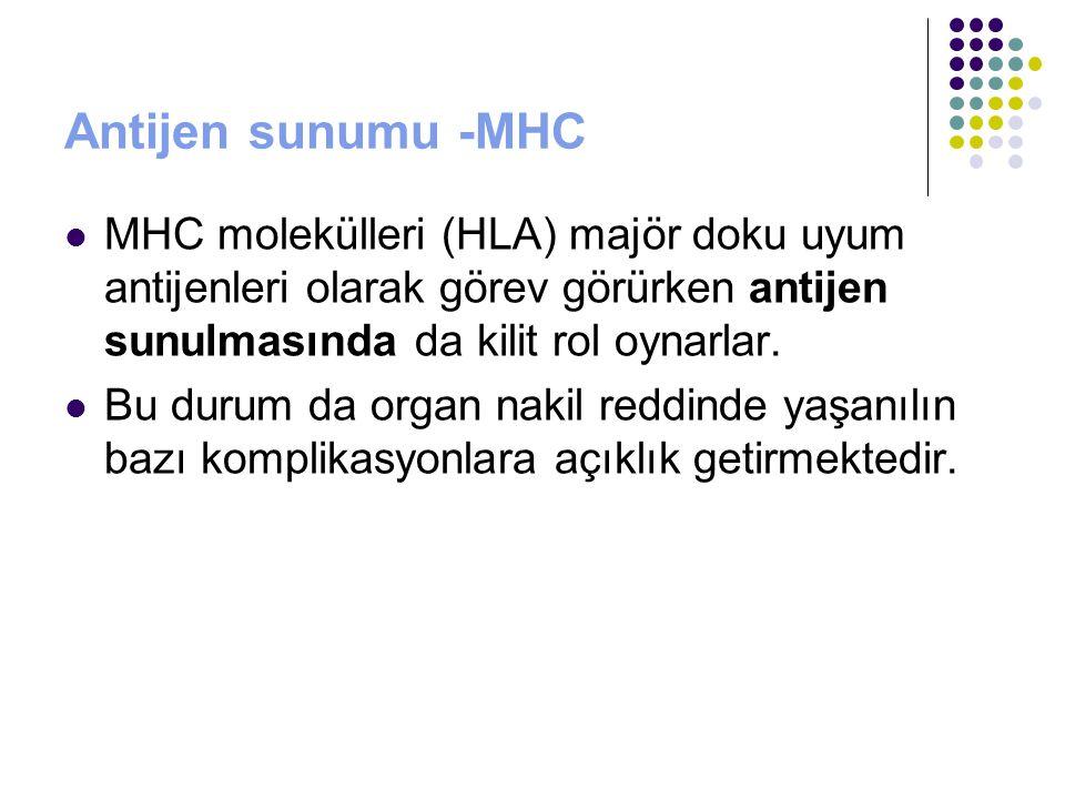 Antijen sunumu -MHC MHC molekülleri (HLA) majör doku uyum antijenleri olarak görev görürken antijen sunulmasında da kilit rol oynarlar.