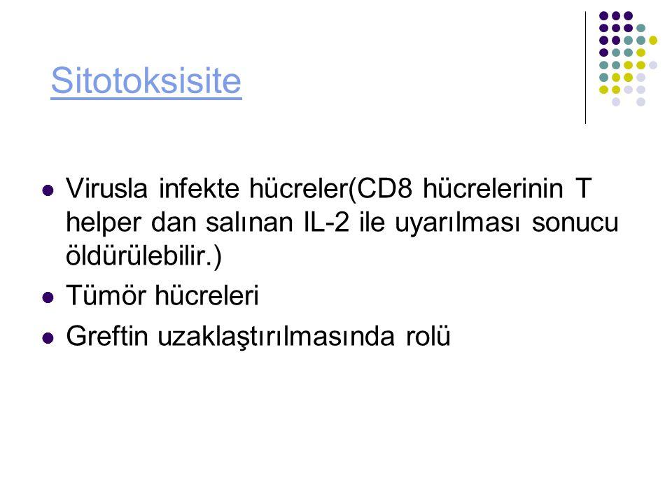 Sitotoksisite Virusla infekte hücreler(CD8 hücrelerinin T helper dan salınan IL-2 ile uyarılması sonucu öldürülebilir.)