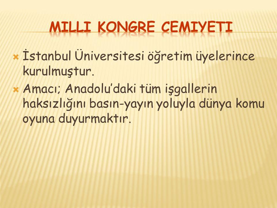 Milli Kongre Cemiyeti İstanbul Üniversitesi öğretim üyelerince kurulmuştur.