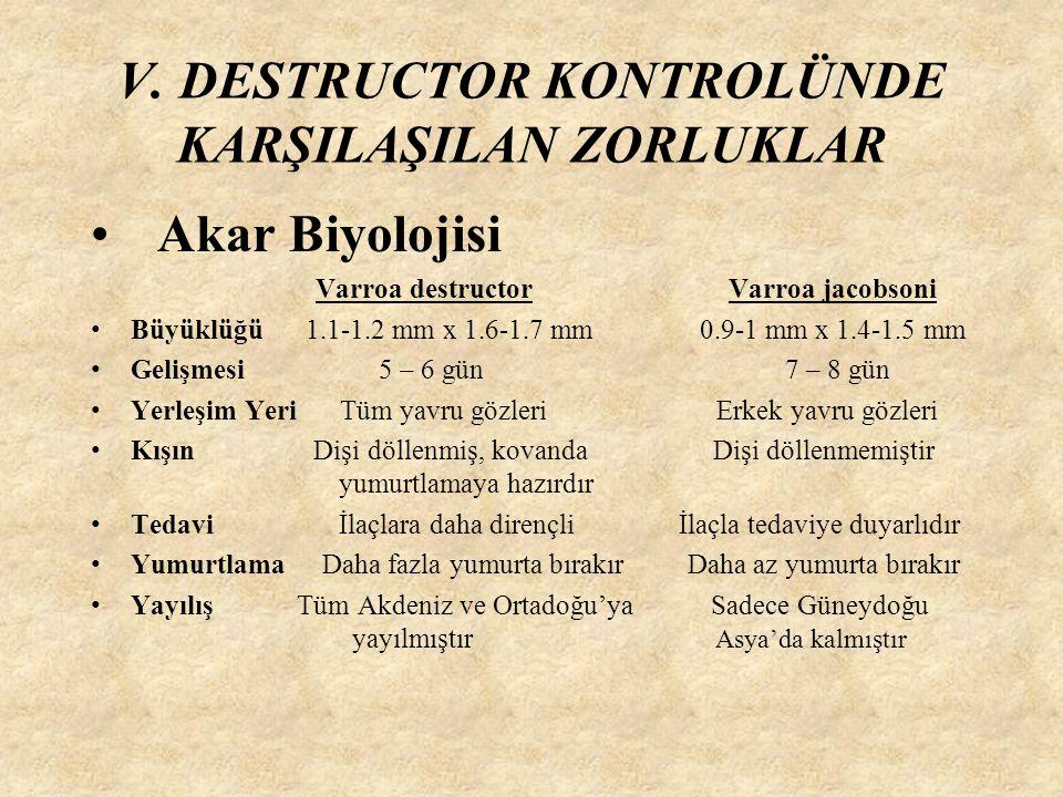 V. DESTRUCTOR KONTROLÜNDE KARŞILAŞILAN ZORLUKLAR