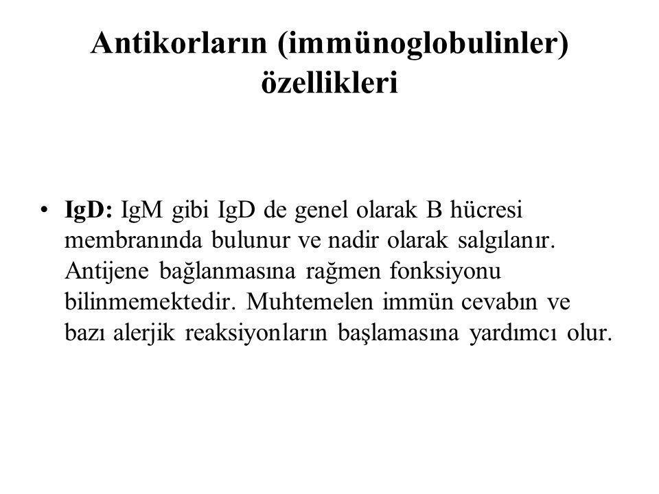 Antikorların (immünoglobulinler) özellikleri