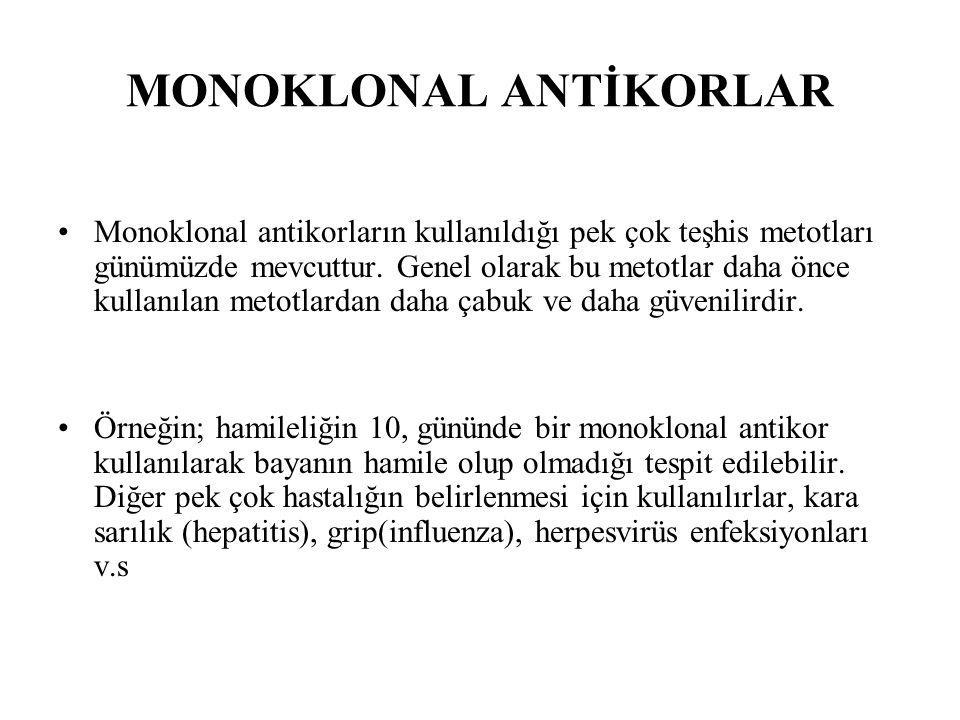MONOKLONAL ANTİKORLAR