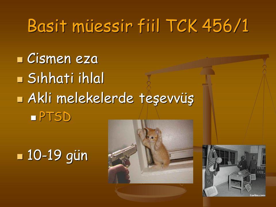 Basit müessir fiil TCK 456/1