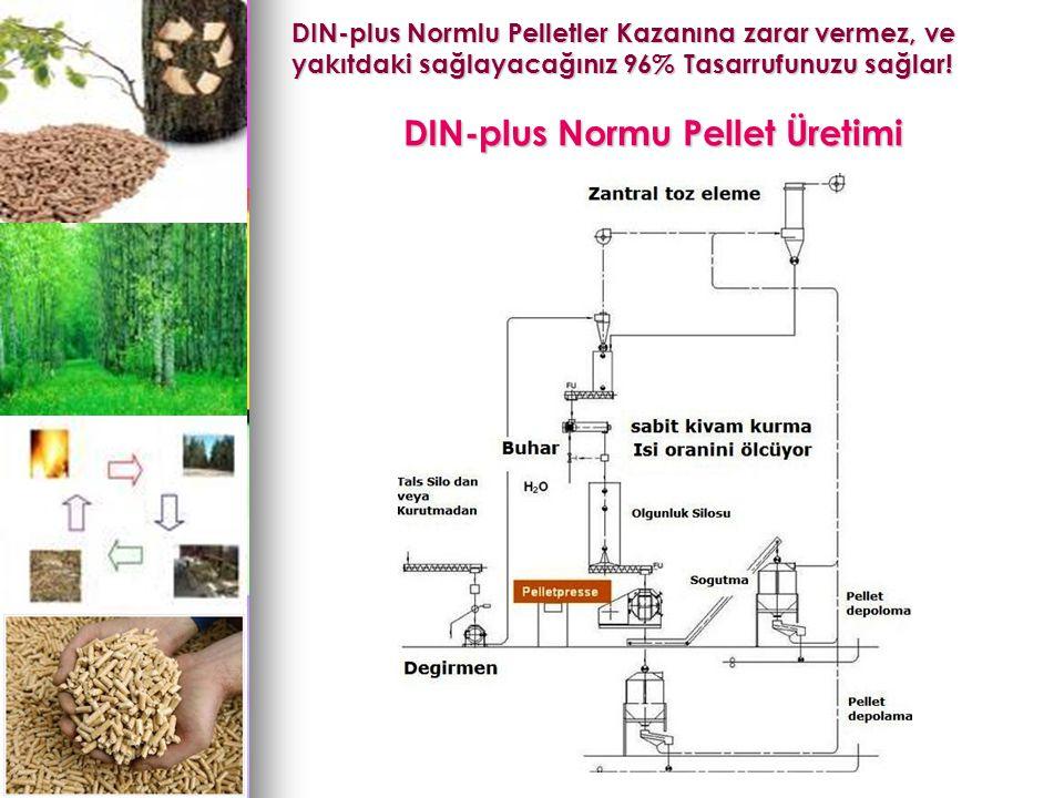 DIN-plus Normu Pellet Üretimi