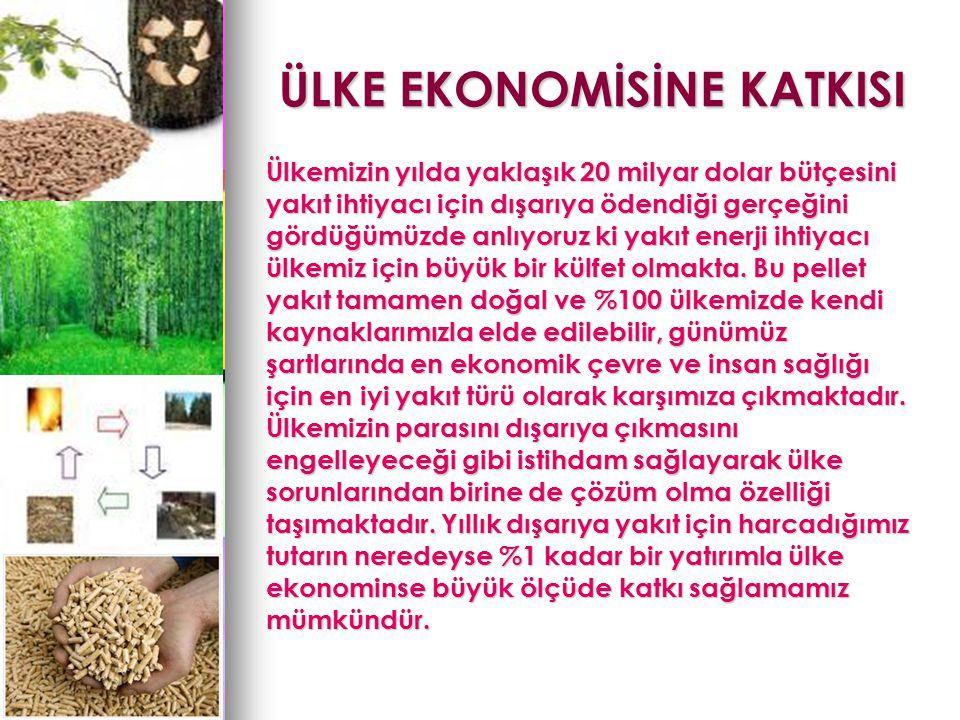 ÜLKE EKONOMİSİNE KATKISI