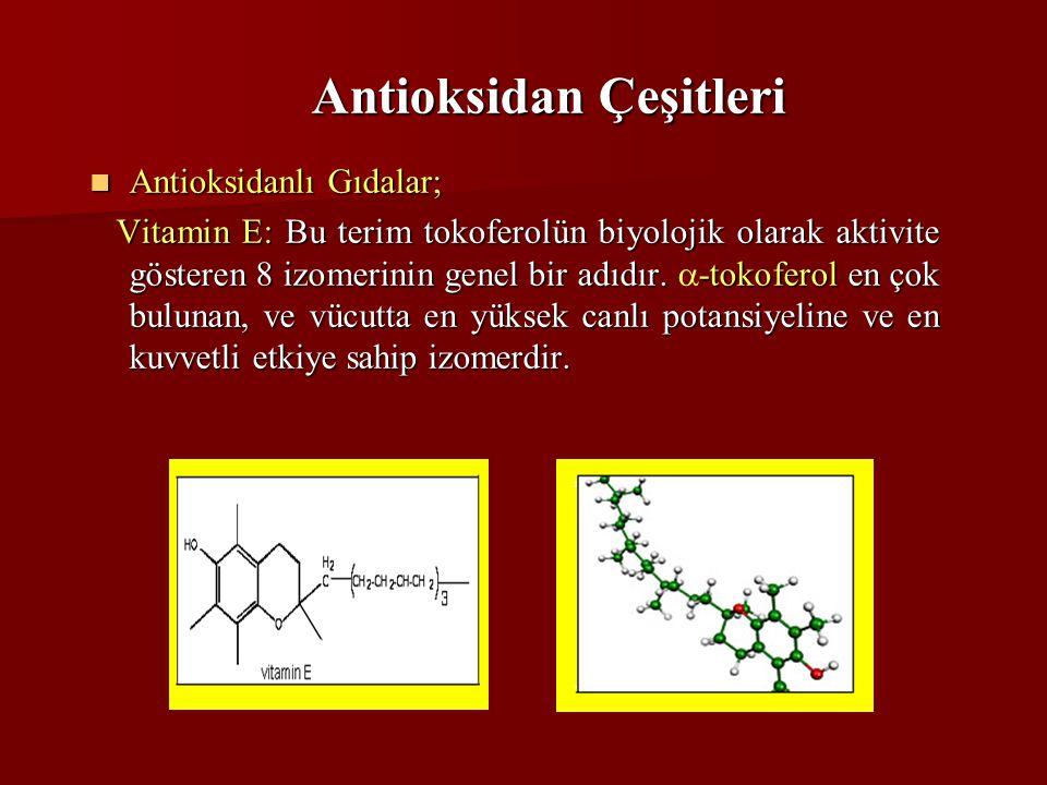 Antioksidan Çeşitleri