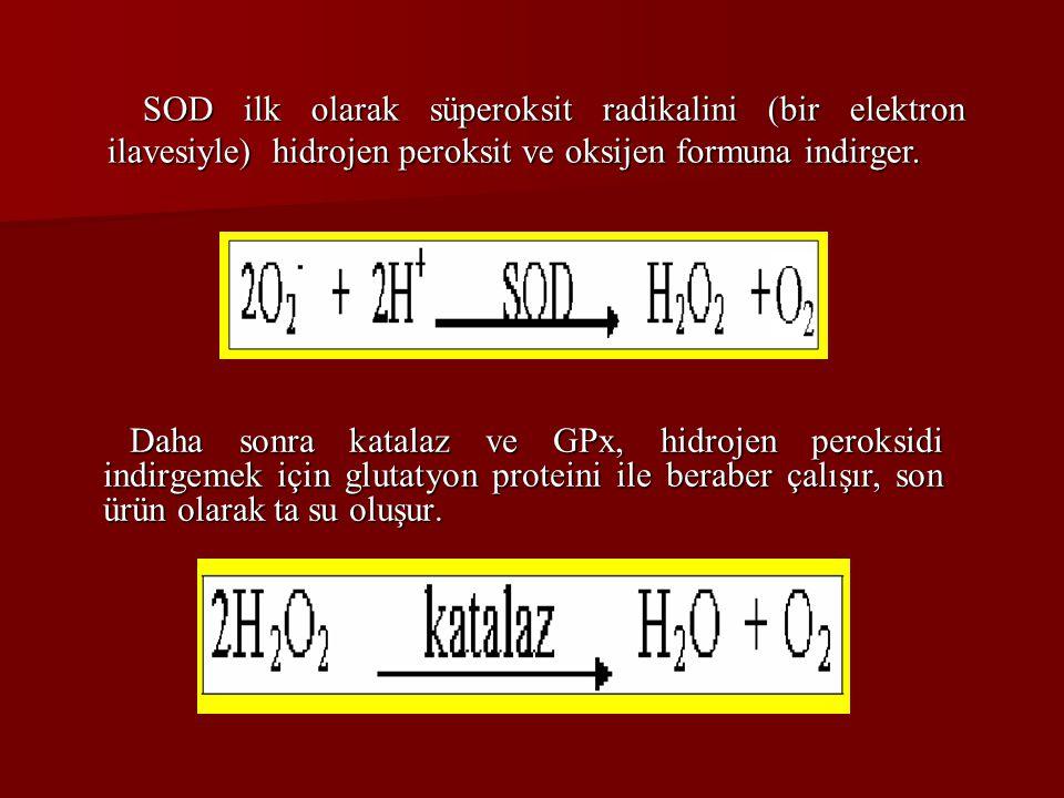 SOD ilk olarak süperoksit radikalini (bir elektron ilavesiyle) hidrojen peroksit ve oksijen formuna indirger.