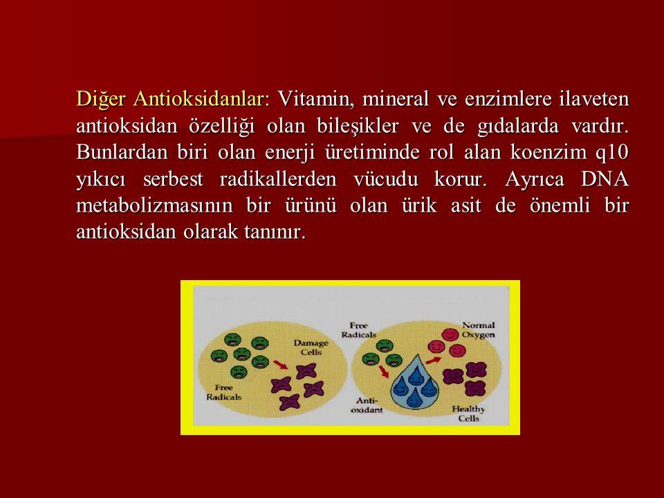 Diğer Antioksidanlar: Vitamin, mineral ve enzimlere ilaveten antioksidan özelliği olan bileşikler ve de gıdalarda vardır.